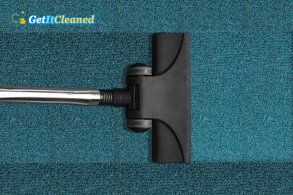 Carpet Cleaning 101: What You Need to Know