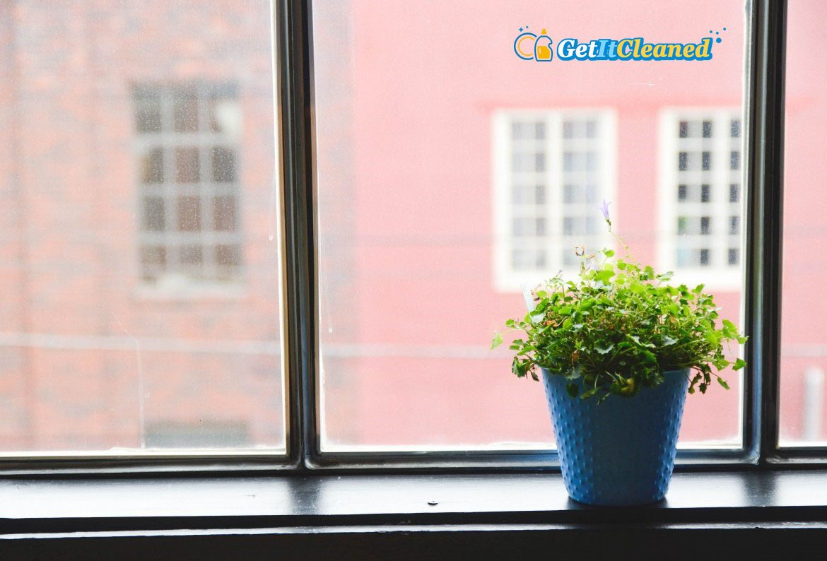 Tricks to Improve the Air Quality in Your Home